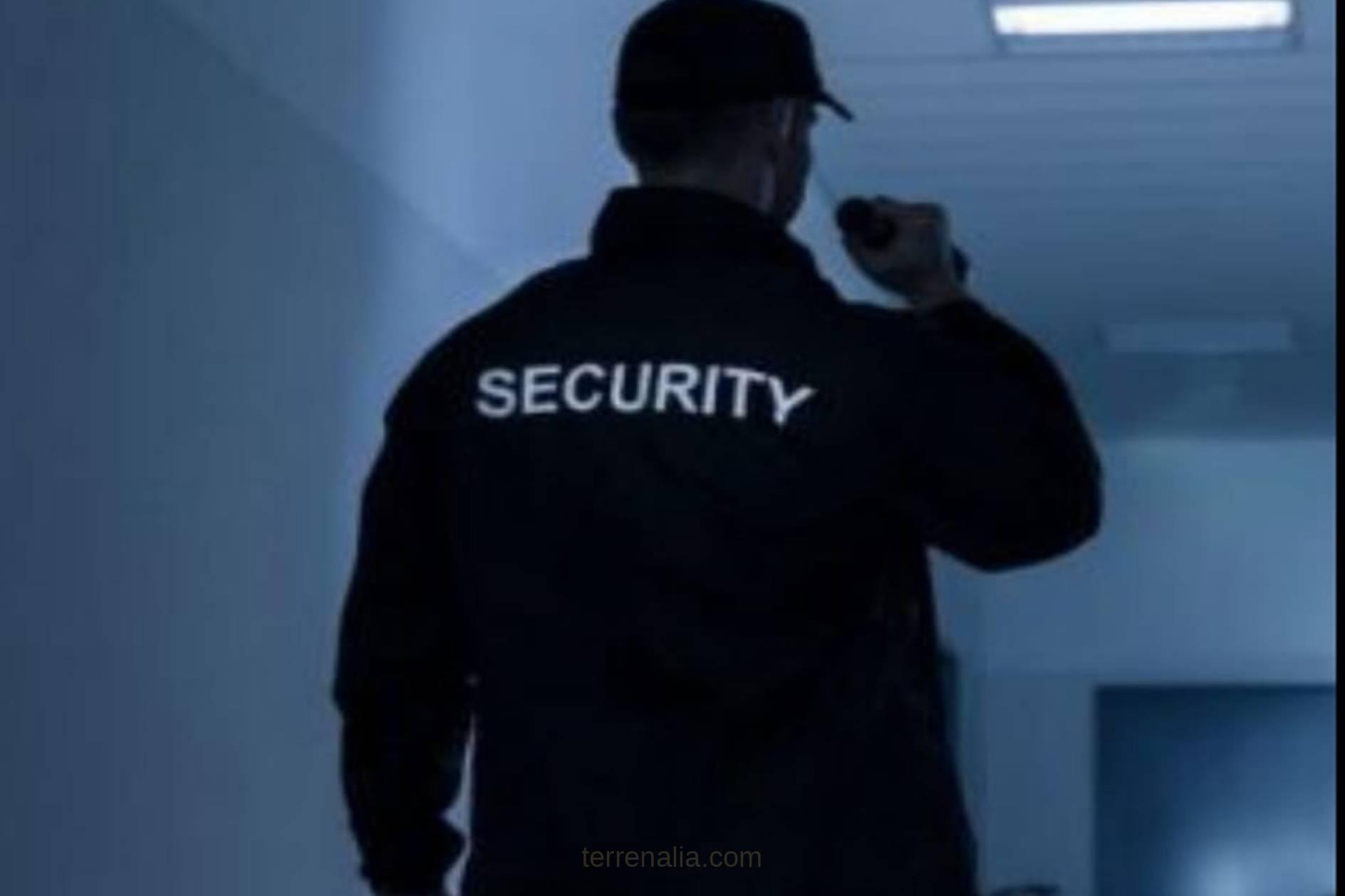 seguridad ibiza vigilancia