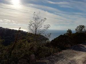 Rustic Land for Sale in Cala Tarida with sea views